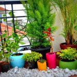 150 Як прикрасити балкон квітами