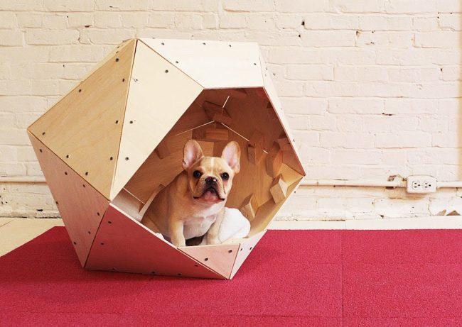 Краща підлога для собаки